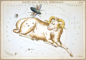 Sidney_Hall_-_Urania's_Mirror_-_Aries_and_Musca_Borealis