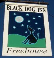 Fig 14 black dog