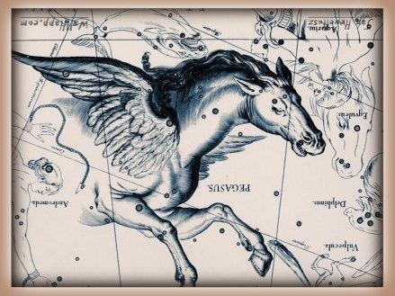 Flying Horse hevel-pegasus