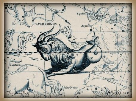 Goat Inn hevel-capricornus-aquarius