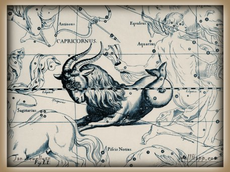 Goat Inn hevel-capricornus-aquarius