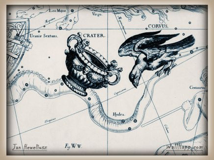 Raven hevel-crater-corvus-hydra